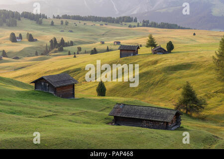 Italy, South Tyrol, Seiser Alm, barns in the morning - Stock Photo