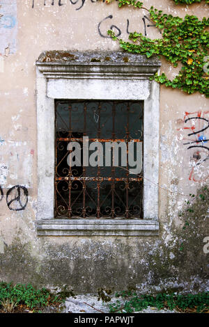 Old window with rusty bars and plant background - Stock Photo