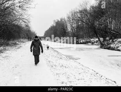 A woman walks her dog down the icy and snow covered tow path along the Leeds-Liverpool canal during a snow shower - Stock Photo