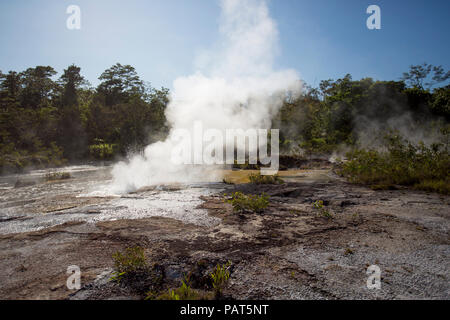 Papua New Guinea, Dei Dei Hot Springs, Fergusson Island. steam and water shooting out of a hot spring. - Stock Photo
