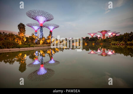 Supertrees, Singapore, illuminated at twilight and reflected in Dragonfly Lake, Gardens by the Bay. - Stock Photo
