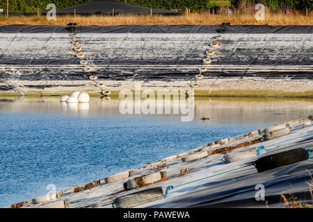 Tuesley Farm, Godalming. 25th July 2018. Heatwave conditions across the south east today. Water levels in the reservoir on Tuesley Farm in Godalming reached dangerously low levels as farm workers braved the heat. Credit: james jagger/Alamy Live News - Stock Photo
