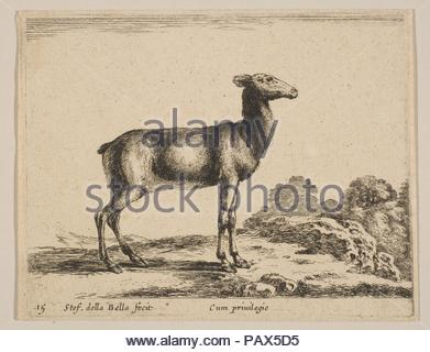 Plate 15: doe, from 'Various animals' (Diversi animali). Artist: Stefano della Bella (Italian, Florence 1610-1664 Florence). Dimensions: Sheet (trimmed to plate): 3 3/8 × 4 5/16 in. (8.6 × 11 cm). Publisher: Pierre François Basan (French, Paris 1723-1797 Paris (?)). Series/Portfolio: 'Various animals' (Diversi animali). Date: ca. 1641. Museum: Metropolitan Museum of Art, New York, USA. - Stock Photo