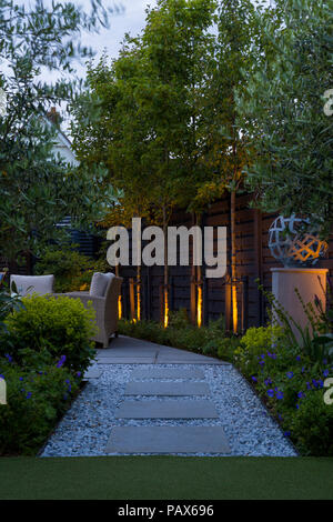 View from golf putting lawn to Pyrus calleryana 'Chanticleer' trees with uplighting - Stock Photo