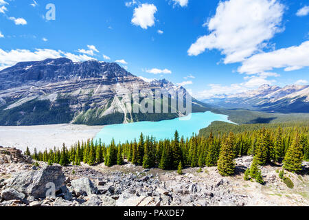 Wide angle view of Peyto Lake from Bow Summit in Banff National Park on the Icefields Parkway. The glacier-fed lake is famous for its unique color - Stock Photo