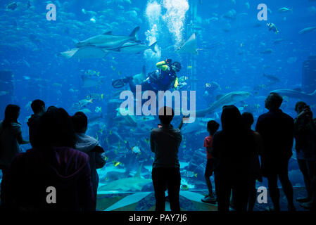 DUBAI, UAE - February 14, 2018: People admire aquarium with over 60000 fish, in Atlantis hotel. Capacity of aquarium is 11 million liters of water. Du - Stock Photo
