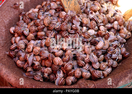 Snail Salad. A bowl of eating snails at a market in Sicily. - Stock Photo