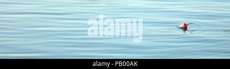 a simple fishing float bobbing on silky smooth cool blue water. Gentle soft pond waves or ripples surround the float. retirement calm peaceful time - Stock Photo