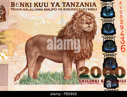 2000 Tanzanian Shillings Bank Note Tanzanian Shilling Is The
