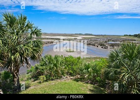A wide angle view of a marshy area at Wakulla Springs along the Apalachee River in Florida - Stock Photo