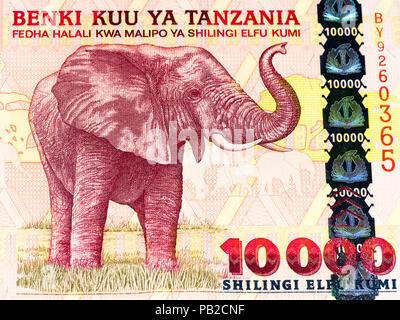 10000 Tanzanian Shillings Bank Note Tanzanian Shilling Is The