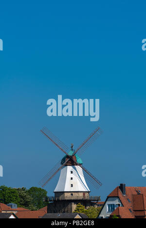 Windmill Amanda , built in 1888, tourist information, museum, landscape of ,Anglen, Baltic Sea, Schleswig-Holstein, Germany, Europe - Stock Photo