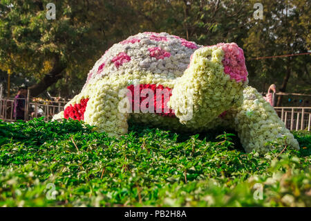 Beautiful Flower arrangements and decoration in the garden. - Stock Photo