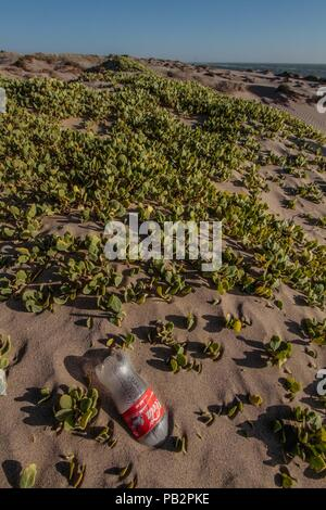 Empty plastic bottle of Coca Cola brand gas, cause of pollution and environmental impact. Sand dunes at Imalaya Beach in the vicinity of Kino Bay. - Stock Photo