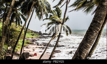Scenic natural beach of Goa in India, in monsoon season with high tidal sea waves, well covered in greenery with tilted coconut trees. - Stock Photo