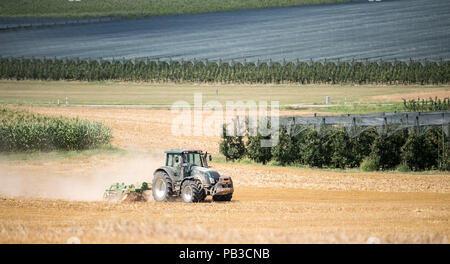 Oehringen, Germany. 26th July, 2018. A tractor ploughs over a former grain field. In the background are orchards and on the left is a corn field. Credit: Sebastian Gollnow/dpa/Alamy Live News - Stock Photo