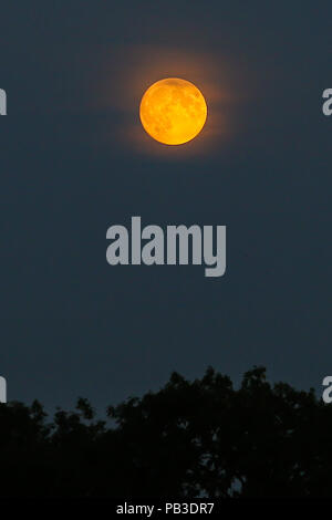 London. UK 26 July 2018. Blood moon above north London. On Friday 27 July, a total lunar eclipse will be visible from almost all parts of the world.  Credit: Dinendra Haria/Alamy Live News - Stock Photo