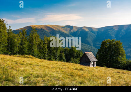herd shed on a grassy hillside near the forest. abandoned place in mountains. lovely afternoon landscape - Stock Photo