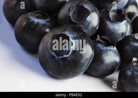Group of bilberries on a white background ,macro photography ,the light shines the fruits surface , a soft shadow is on the white background - Stock Photo