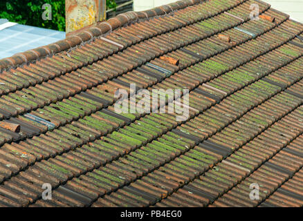 The old tiled roof, mossy and rotten, brick roof - Stock Photo