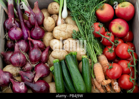 Vegetable basket display at RHS Tatton Park flower show 2018. Cheshire, UK Stock Photo