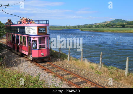 Narrow gauge open electric tramway transporting tourists along river Axe in East Devon - Stock Photo