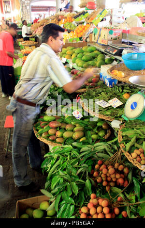 Mangos, lychees, and plenty of citrus fruits for sale at a stall in the fruits and vegetables market hall in Port Louis - Stock Photo