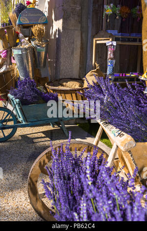 typical decoration with lavender and wooden handcart, Provence, France, storefront in Sault, department Vaucluse, region Provence-Alpes-Côte d'Azur - Stock Photo