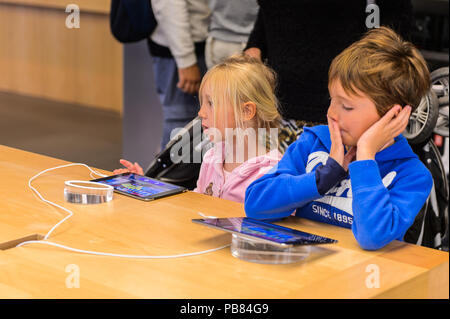 NEW YORK, USA - SEP 22, 2015: Unidentified children in the Apple store on the Fifth Avenue, New York. The store sells Macintosh personal computers, so - Stock Photo