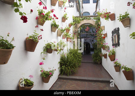 June 10, 2018 - CóRdoba, Spain - Typical Cordovan patio with flowers.Córdoba was the capital of the Later Hispania in the times of the Roman Republic, or of the Bética province during the Roman Empire and the Caliphate of Córdoba during the Muslim era. Credit: Lito Lizana/SOPA Images/ZUMA Wire/Alamy Live News - Stock Photo