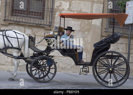 June 10, 2018 - CóRdoba, Spain - Carriage driver with the cordobes hat.Córdoba was the capital of the Later Hispania in the times of the Roman Republic, or of the Bética province during the Roman Empire and the Caliphate of Córdoba during the Muslim era. Credit: Lito Lizana/SOPA Images/ZUMA Wire/Alamy Live News - Stock Photo