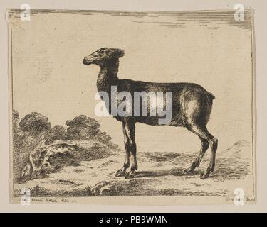 Plate 15: doe, from 'Various animals' (Diversi animali). Artist: After Stefano della Bella (Italian, Florence 1610-1664 Florence). Dimensions: Sheet (trimmed): 3 3/16 in. × 4 in. (8.1 × 10.1 cm). Printmaker: Anonymous, 17th century. Series/Portfolio: 'Various animals' (Diversi animali). Date: after 1641. Museum: Metropolitan Museum of Art, New York, USA. - Stock Photo