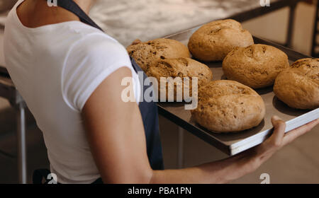 Close up of female baker holding a freshly baked bread on a baking tray. Woman carrying a tray of with baked bread in a bakery. - Stock Photo