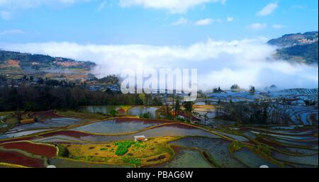 Aerial image showing colorful rice paddies in the foreground, sea of clouds in the background and the Qingkou Hani Folk Village on the left. - Stock Photo