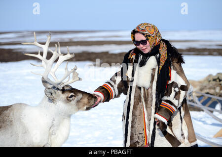 Carolina Serotetto, Nenet teenager dressed in traditional winter coat made of reindeer skin with  pet ''akva'' Reindeer (Rangifer tarandus). Yar-Sale district, Yamal, Northwest Siberia, Russia. April 2016. - Stock Photo