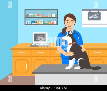 Young woman veterinarian doctor holds husky dog on examination table in vet clinic. Vector cartoon illustration. Pets healthcare background. Domestic  - Stock Photo