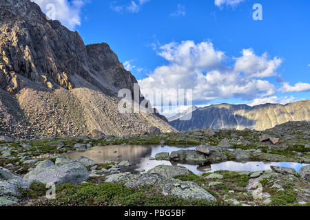 Site of mountain tundra covered with rhododendron golden near lake in hanging valley. Eastern Sayan. Russia - Stock Photo