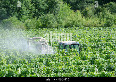 Farmer spraying grape vines in a french vineyard with tractor - Stock Photo