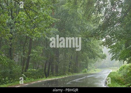 Misty winding forest mountain road in the summer rain Lower Silesia poland Mount Sleza Tampadla Pass - Stock Photo