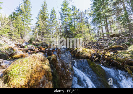 Beautiful small river near oeschinensee in kandersteg switzerland - Stock Photo