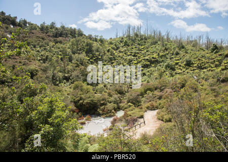 Scenic viewpoint overlooking the natural mud pools at Orakei Korako geothermal area in Rotorua, New Zealand - Stock Photo