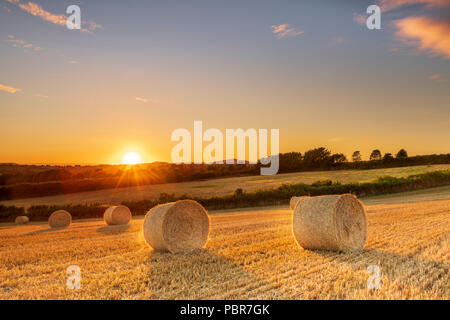 UK Weather - After a cooler day with cloud cover and a few showers, the sun sets in a clear sky over a recently harvested wheat field near Melplash in - Stock Photo