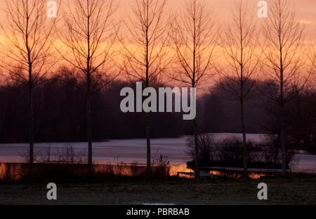 AJAXNETPHOTO. VAUX SUR SOMME, FRANCE. - WOODED BANKS OF THE RIVER SOMME AT SUNSET.  PHOTO:JONATHAN EASTLAND/AJAX REF:D1X0601_3183 - Stock Photo