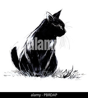 black cat playful hunting waiting to pounce on her prey - Stock Photo