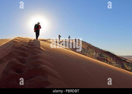 A group of walkers facing the setting sun on top of Elim dune in the Namib-Naukluft National Park, Namibia. - Stock Photo