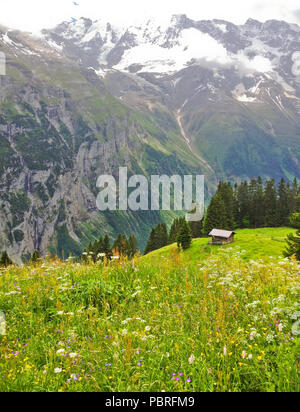 Beautiful Murren Landscape view, Summer Mountain Cottage with Lauterbrunnen Valley and Swiss Alps in background, Jungfrau region,  Switzerland, Europe - Stock Photo