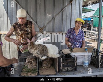 DNIPROPETROVSK, UKRAINE - AUGUST 15, 2018: Old people selling living rabbits in cages on Dniepropetrovsk main market, slaviansky, during a warm aftern - Stock Photo
