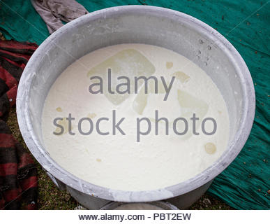 preparing curd vegetable in marriage for upcoming guest - Stock Photo
