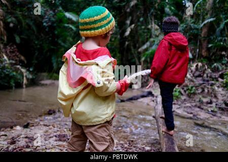 Two children playing near a rainforest stream, Kauri Creek walk, Jungal Jungal, Danbulla, Tablelands Region, Far North Queensland, Australia - Stock Photo