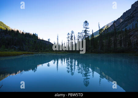 Bright evening. Lake kucherlinskoe. Calmness, serenity. Altai Mountains, Siberia. Russia. blue clear water in the mountain lake. Wildlife of the taiga - Stock Photo